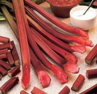 Rhubarb Red Champagne