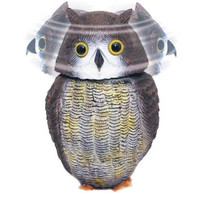 Action Owl