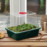 Mini High Dome Propagator - 3 Pack