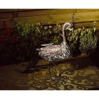 Ornamentla Peacock