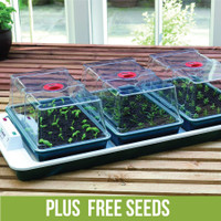 Large Propagator Big 3 Plus Free Seeds