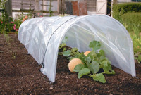 poly tunnel picture