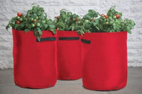 3 Vegetable Patio Planters
