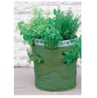 Kitchen Herb Planters
