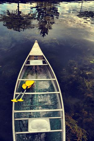 Yellow Paddles