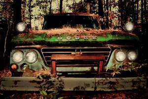 Dreaming In Dodge