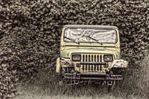 Ivy Jeep