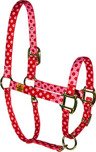 Red Pink Polka High Fashion Horse Halter