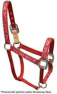 Red Bandana Equine Elite Halter
