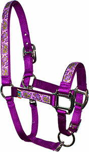 Purple Paisley Equine Elite Halter