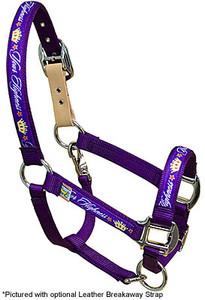 Your Highness Equine Elite Halter