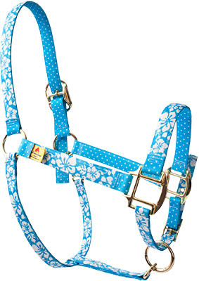 Island Floral Blue High Fashion Halter For Miniature Horse