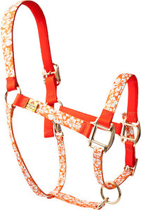 Island Floral Orange High Fashion Halter For Miniature Horse