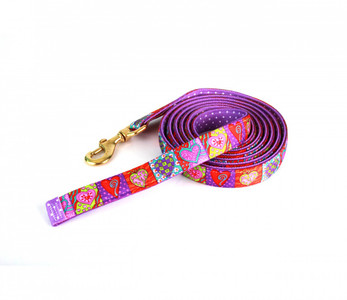 Crazy Hearts High Fashion Horse Lead