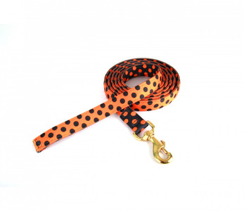 Halloween Polka High Fashion Horse Lead