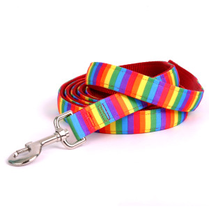Rainbow Stripe Equine Elite Horse Lead