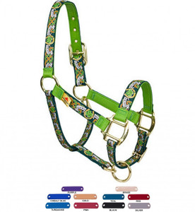 Personalized Name Plate Lucky Horse High Fashion Horse Halter
