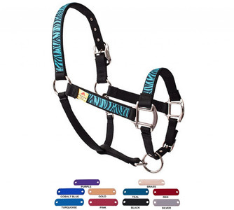 Personalized Name Plate Zebra Teal Equine Elite Halter