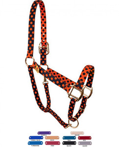 Personalized Name Plate Halloween Polka High Fashion Horse Halter