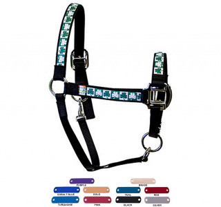 Personalized Name Plate Shamrocks Equine Elite Halter