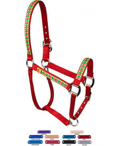 Personalized Name Plate Christmas Cheer Equine Elite Halter