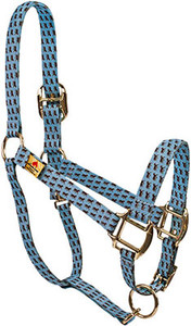 Little Horses Blue High Fashion Horse Halter