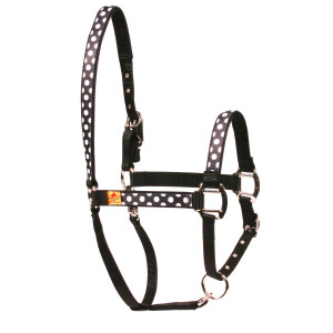 Licorice Polka Equine Elite Horse Halter
