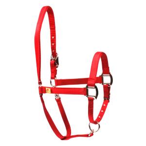Solid Red Equine Elite Horse Halter