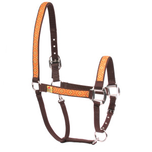 Cleo Orange Equine Elite Horse Halter