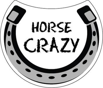 Horse Crazy Magnet