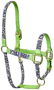 Black Zebra with Green Polka Accent High Fashion Horse Halter