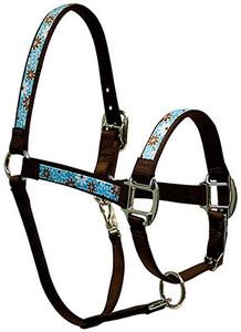 Daisy Chain Blue Equine Elite Halter