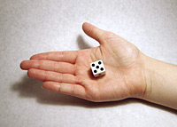 16mm dice size
