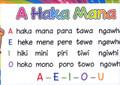 A Haka Mana A3 Laminated Classroom Poster
