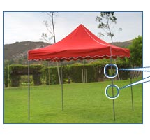 clip-canopy.jpg
