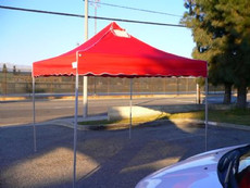 Four Seasons Flame Retardant Canopy Replacement Top (Size:10'x10')
