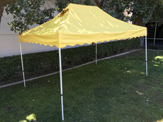 Queen Palm Four Seasons Canopy Frame and Flame Retardant Top (Size:10'x15')