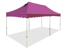 Queen Palm Four Seasons Canopy Frame and Flame Retardant Top (Size:10'x20')