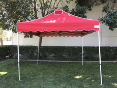 California Palm Four Seasons Canopy Frame and Flame Retardant Top (Size:10'x10')