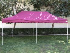 California King Palm Four Seasons Canopy Frame and Flame Retardant Top (Size:10'x20')