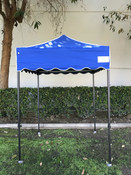 Queen Palm Canopy Frame and Flame Retardant Top (Size:5'x5')