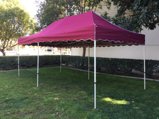Queen Palm Canopy Frame and Top (Size:10'x20')