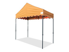 Queen Palm Canopy Frame and Top (Size:5'x10')