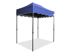 Queen Palm Canopy Frame and Top (Size:5'x7.25')