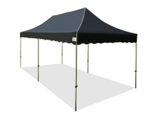 California Palm Canopy Frame and Top (Size:10'x20')