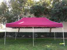 Queen Palm Canopy Frame and Flame Retardant Top (Size:10'x20')