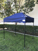 Queen Palm Canopy Frame and Flame Retardant Top (Size:5'x7.25')