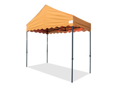 Queen Palm Canopy Frame and Flame Retardant Top (Size:5'x10')