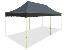 California King Palm Canopy Frame and Flame Retardant Top (Size:10'x20')