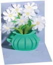 Daisy Bouquet Gift Enclosure